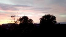 Žerave zore