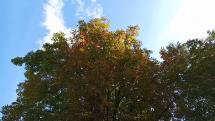 Jeseň v Prešove