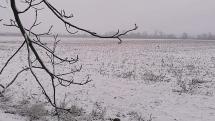 Prvý sneh, Senec, Veľký Biel