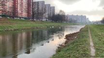 prvý ľad v Petržalke