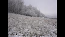 Zima a mráz v Bardejove