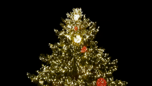 Vianoce BB