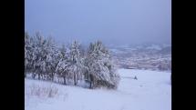 Snehové prehánky v Bardejove 1