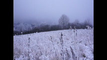 REGINA KOŠICE - Novodobá zima (okolie Bardejova)