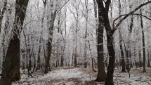 Zima vo Veľatoch