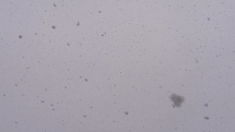 Husté sneženie, Senec
