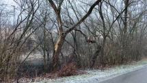 Sneżenie a ochladenie v Levoči