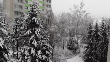 Snehova fujavica