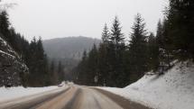 Zasnezena cesta