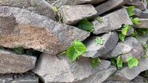 sedím si sám na kameni