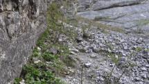Bývalý kameňolom v Tatranskej Kotline