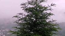 Po daždi v Novej Bani