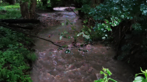 Rieka Chvojnica po búrka