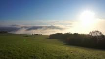 REGINA - Svetový deň fotografie prírody (Bardejov) (1)