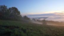 REGINA - Svetový deň fotografie prírody (Bardejov) (2)