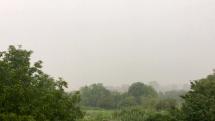 Daždivé ráno, Plechotice