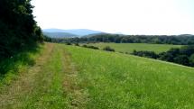 Malé Karpaty - v okolí Bukovej a Cerovej