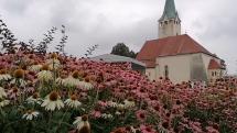 Stropkov plný kvetov