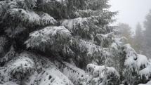 Javorníky, sněženie