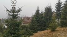 Sneží aj sa topí