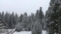 Ako nasnežilo v Tatranskej Kotline
