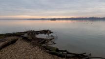 Dunaj v Hamuliakove 2